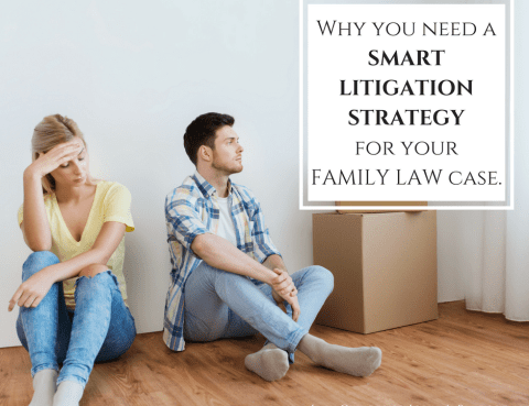 Smart Litigation Strategy for Family Law Case
